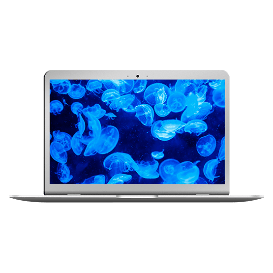 "soporte tecnico Macbook Air 11"" Principios 2014 (A1465)"