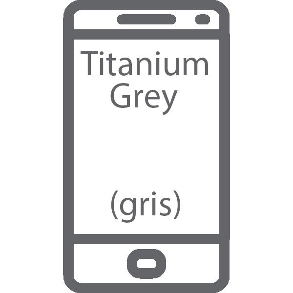 reparar Pantalla Samsung Galaxy S9 Plus Titanium Grey gris